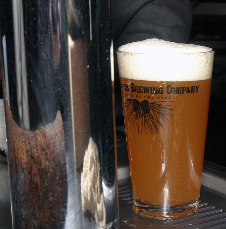 Pinelands-Opening PintGlass
